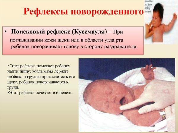 Беременность 39 недель