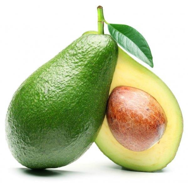 Формирование и развитие плода, фото беременности по месяцам