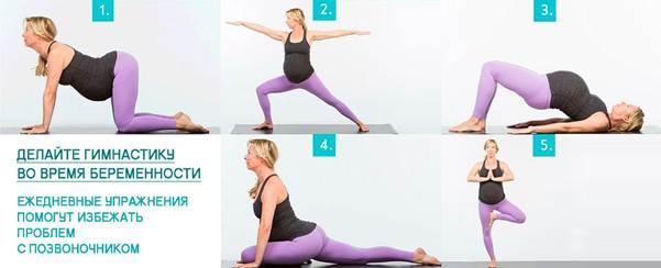 Упражнения для беременных в 3 триместре